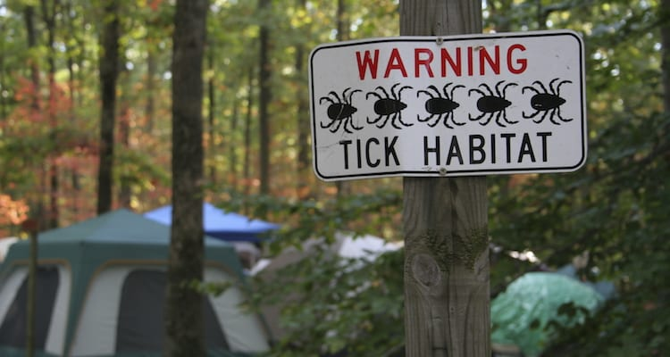 Sign warning of tick habitat due to Lyme Disease risk.