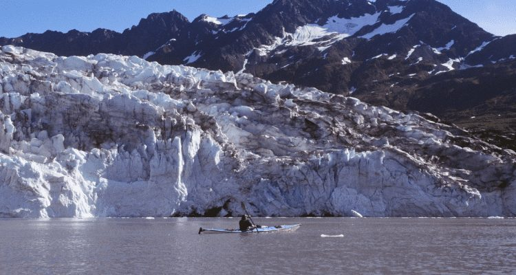 David Aston Kayaking Near Orca Whales In Alaska