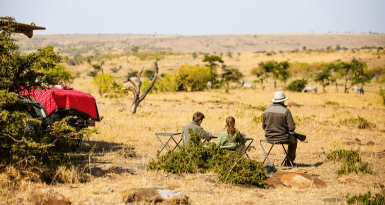 Lunch during an African Safari