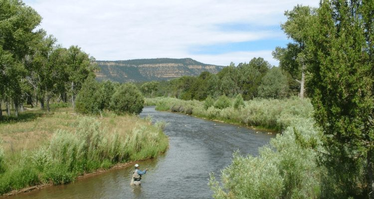 Man fly fishing with AdventureHacks Team on the Pecos River