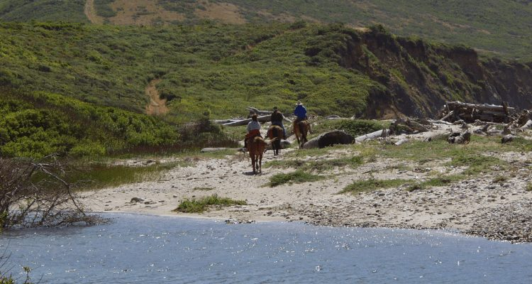 David Aston and Family enjoying a summer horseback adventure on the Northern California coast about 10 miles North of Point Reyes