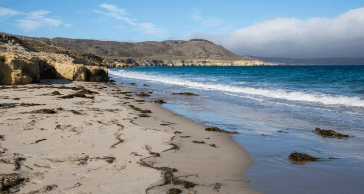 About Channel Islands National Park