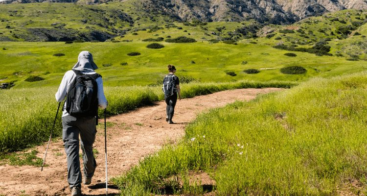 Trails In The Channel Islands National Park